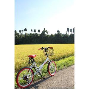 送料無料 折りたたみ自転車 20インチ シマノ製6段ギア 折畳み自転車 折畳自転車 自転車 鍵 ライト 折りたたみカゴ 小径車 ミニベロ 自転車 おしゃれ|smart-factory|17
