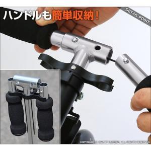 キックボード 平日限定2000円クーポン 8インチ 2色 キックスクーター 折りたたみ 大人用 子供用 GRAPHIS GR-K グラフィス|smart-factory|05
