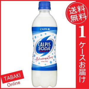 カルピスソーダ PET500ml ×24本 (送料無料)