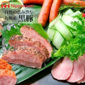 ハムギフト 日本ハム 九州産黒豚 ( NO-50 ) メーカー直送・送料無料 ニッポンハム パストラミポーク 焼豚 | ギフト お祝い 内祝い お返し|smartoffice|04