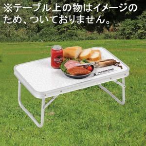 ラフォーレアルミFDテーブルコンパクト56×34cm UC-512|smile-hg