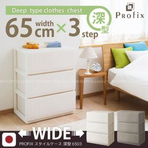 PROFIX「プロフィックス」スタイルケース「6503深型」|smile-hg