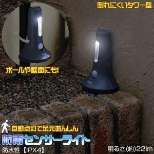 センサーライト LED /  足もと安心 防雨センサーライト / ASL-3305 smile-hg