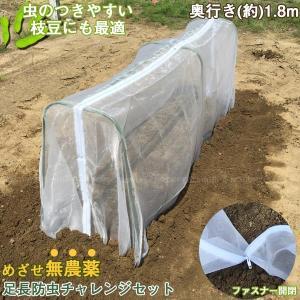 枝豆や白菜などの栽培に最適。 家庭菜園の防虫対策になる支柱と防虫ネットのセット商品です。 カメムシ・...