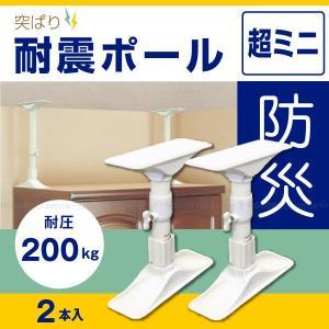 突ぱり耐震ポール超ミニ「2本入」REQ-22|smile-hg
