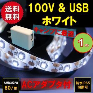 特長】 ご家庭のコンセント100V & USBのどちらでも接続できます。 用途が広い白色発光...