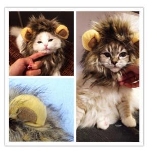 ねこ たてがみ ライオン ペット ペットかつら 犬猫用ウィッグ 小型犬 たてがみ 耳付き ライオンキャップ ハロウィン コスプレ 猫 ネコ 簡単着脱
