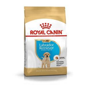 ロイヤルカナン BHN ラブラドールレトリバー 子犬用 3kg smilefield
