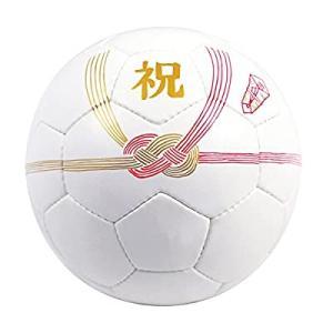 【SFIDA(スフィーダ)】 Celebration Ball フットサルボール|smilefield