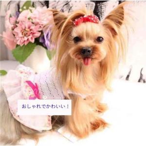 犬服 犬の服 小型犬 ワンピース パープル おしゃれ かわいい ドックウェア ペット服 インスタ映え 送料無料