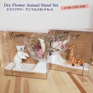 ドライフラワー アニマル スタンド セット フラワーベース 花瓶 くま きりん 雑貨 ミニブーケ 置物 印鑑立て ペン立て 動物 ベアー 一輪挿し 花びん 飾り|smileme
