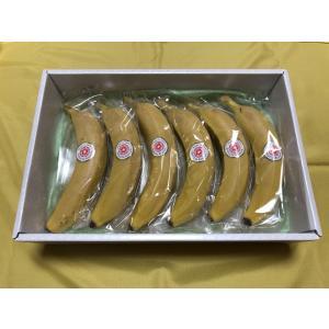 愛媛産 スマイルイン・バナナ 6本
