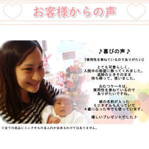 おむつケーキ スヌーピー オムツケーキ 出産祝...の詳細画像5