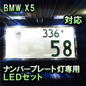 LEDナンバープレート用ランプ BMW X5 E70対応 2点セット