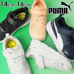 プーマ PUMA ピュア ジョガー V インファント スニーカー 男の子 女の子 子供靴 ベビー キッズ 370577 ローカット ベルクロ ベビーシューズ キッズシューズ|smw