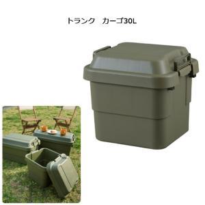 東谷 あづまや 収納用品 トランク カーゴ30L TC-30 【ZAKK】トランク 車 クローゼット 工具入れ|snb-shop