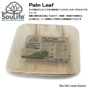 EcoSoulife/エコソウライフ スクエア平皿/Palm Leaf 5pc Set Large Square /14891|snb-shop
