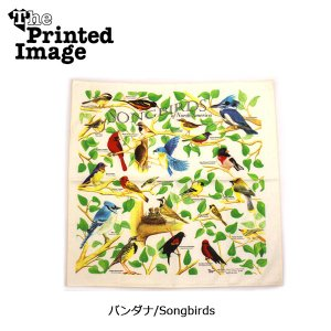The Printed Image/ザ・プリンテッドイメージ  バンダナ/Songbirds 【メール便・代引不可】 snb-shop