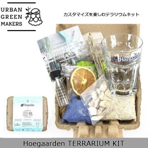 Urban Green Makers/アーバングリーンメーカーズ  Hoegaarden TERRARIUM KIT「Hoegaarden」 /観葉植物 インテリア 【雑貨】|snb-shop