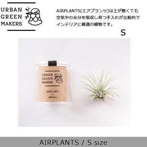 Urban Green Makers/アーバングリーンメーカーズ  AIRPLANTS SPECIAL SMALL(エアプランツ スペシャルS) /観葉植物 インテリア 【雑貨】|snb-shop