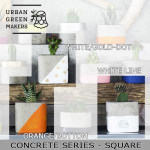 Urban Green Makers/アーバングリーンメーカーズ  CONCRETE SIRIES - SQUARE /観葉植物 インテリア 【雑貨】|snb-shop