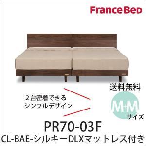 フランスベッド ベッド セミダブル2台セット PR70-03F BAEシルキーDLXマット付 すきま...