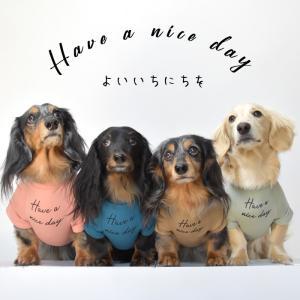 newダックスフレンチ袖Tシャツ ダックス フレンチ袖Tシャツ 犬 ロゴ服 DOG dog  petto ペット ゆうパケット対応 snowdrop