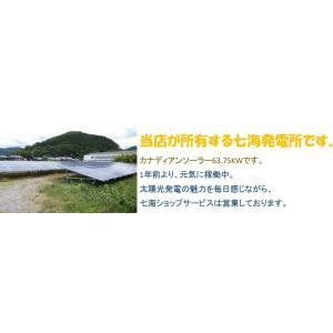 ソーラーパネル 接続ケーブル用 MC4 型 コネクター 500組セット DIY 車 太陽光パネル ソーラーパネル 発電装置|snowkmu1|09