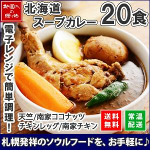 北海道 スープカレー レトルト 業務用 20食セット お取り寄せ グルメ ギフト プレゼント 食べ物 ベル食品|snowland