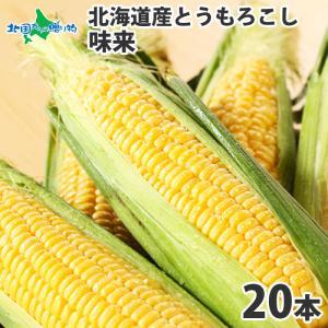 とうもろこし 北海道産 お取り寄せ お土産 美味しい トウモ...