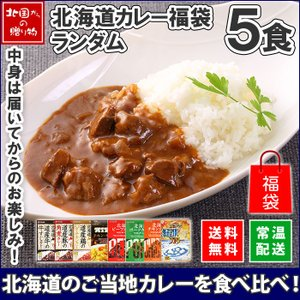 カレー レトルト セット レトルトカレー 北海道 ご当地カレー 福袋 5食 グルメ お取り寄せ ギフト プレゼント 食べ物|snowland