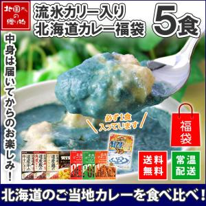 北海道 クリシュナ カレー セット レトルトカレー ご当地カレー 福袋 5食 グルメ お取り寄せ オホーツク 流氷カリー ギフト プレゼント 食べ物|snowland
