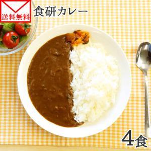 ポイント消化 カレー レトルト  食研カレー セット 4食 お取り寄せ メール便 セール 送料無料|snowland