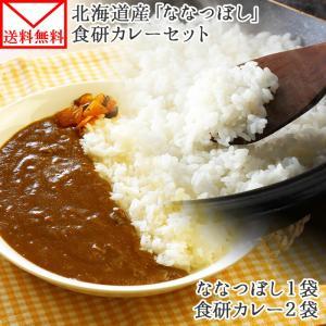 ポイント消化 カレー レトルト  食研カレー セット 2食 北海道産 米 ななつぼし 300g お取り寄せ メール便 セール|snowland