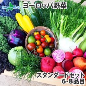 野菜 詰め合わせ お試し 珍しい野菜 ヨーロッパ野菜 スタンダード ギフト プレゼント 食べ物 お取り寄せグルメ 産地直送 送料無料|snowland