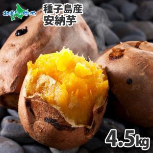 安納芋 種子島 15-25本 計5kg 甘い さつまいも 安納芋 焼き芋 サツマイモ 芋 産地直送 ギフト プレゼント 食べ物|snowland