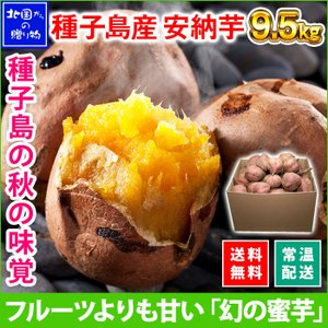 安納芋 種子島 30-50本 計10kg 甘い さつまいも 安納芋 焼き芋 サツマイモ 芋 産地直送 ギフト プレゼント 食べ物|snowland