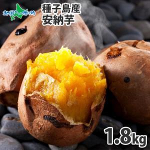 安納芋 種子島 6-10本 計2kg 甘い さつまいも 安納芋 焼き芋 サツマイモ 芋 産地直送 ギフト プレゼント 食べ物|snowland