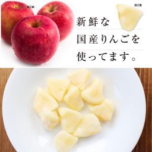 ドライフルーツ 国産 りんご ふじ 大袋 120g リンゴ ドライりんご ポイント消化 メール便 食品 おやつ 南信州菓子工房 ギフト ヨーグルトに|so-suke|06