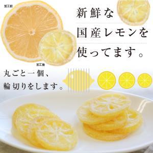 ドライフルーツ 国産 レモン 大袋 105g 輪切り 皮まで美味しい 酸味控えめ ポイント消化 ドライレモン 南信州菓子工房 ギフト ヨーグルトに|so-suke|11