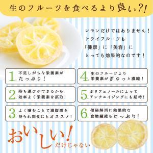 ドライフルーツ 国産 レモン 大袋 105g 輪切り 皮まで美味しい 酸味控えめ ポイント消化 ドライレモン 南信州菓子工房 ギフト ヨーグルトに|so-suke|14
