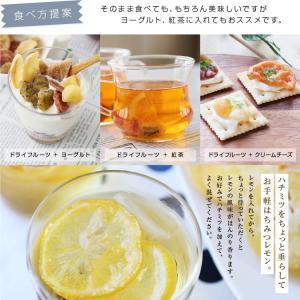ドライフルーツ 国産 レモン 大袋 105g 輪切り 皮まで美味しい 酸味控えめ ポイント消化 ドライレモン 南信州菓子工房 ギフト ヨーグルトに|so-suke|15