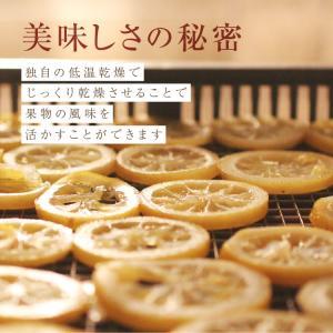 ドライフルーツ 国産 レモン 大袋 105g 輪切り 皮まで美味しい 酸味控えめ ポイント消化 ドライレモン 南信州菓子工房 ギフト ヨーグルトに|so-suke|10