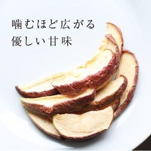 ドライフルーツ 砂糖不使用 無添加 国産 りんご 50g 送料無料 ドライりんご リンゴ 長野 お菓子 おやつ ヨーグルト プチギフト|so-suke|11