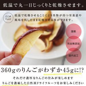 ドライフルーツ 砂糖不使用 無添加 国産 りんご 50g ドライりんご リンゴ 長野 お菓子 おやつ ヨーグルト プチギフト|so-suke|06
