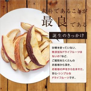 ドライフルーツ 砂糖不使用 無添加 国産 りんご 50g 送料無料 ドライりんご リンゴ 長野 お菓子 おやつ ヨーグルト プチギフト|so-suke|10