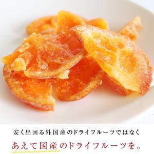 ドライフルーツ 国産 清見オレンジ 大袋 105g ドライオレンジ ポイント消化 メール便 食品 おやつ 南信州菓子工房 ギフト ヨーグルトに|so-suke|03