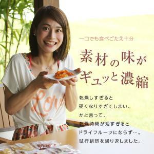 ドライフルーツ 国産 清見オレンジ 大袋 105g ドライオレンジ ポイント消化 メール便 食品 おやつ 南信州菓子工房 ギフト ヨーグルトに|so-suke|08
