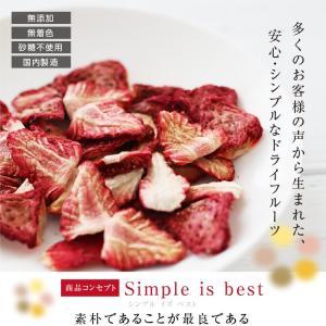 ドライフルーツ 砂糖不使用 無添加 国産 いちご 30g ドライいちご 苺 お菓子 おやつ ヨーグルトに かわいい プチギフト|so-suke|03