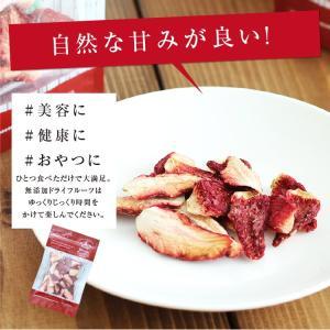 ドライフルーツ 砂糖不使用 無添加 国産 いちご 30g ドライいちご 苺 お菓子 おやつ ヨーグルトに かわいい プチギフト|so-suke|08